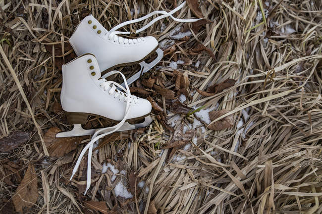 Ice skates lying in weeds — Stock Photo