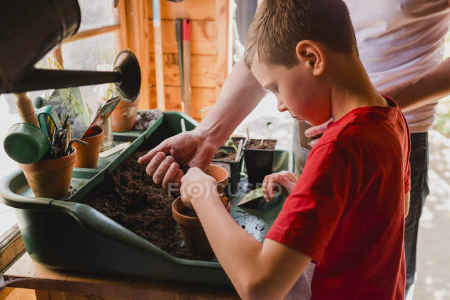 Father and son planting seeds — Stock Photo