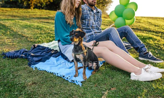 Couple sitting on blanket with dog — Stock Photo