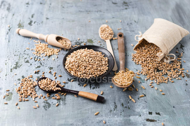 Wooden spoons with grains — Stock Photo