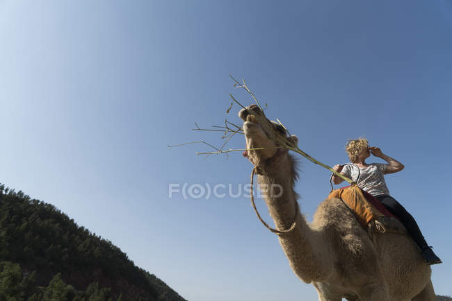 Woman riding on a camel — Stock Photo