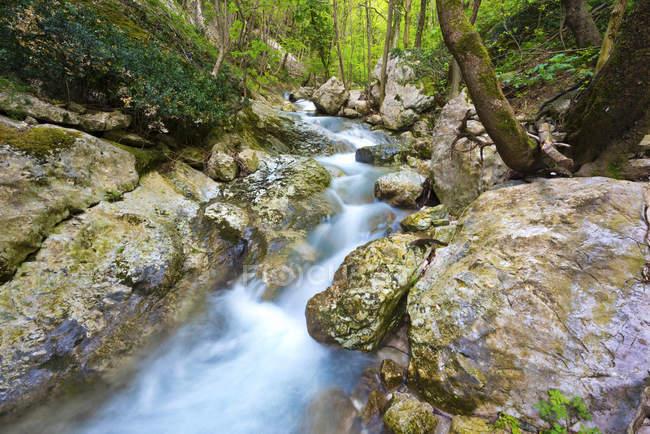Річка в'язницях в Монте Cucco Park — стокове фото