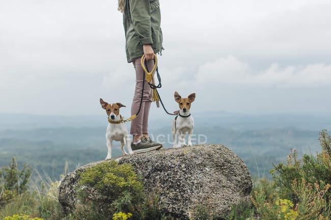 Femme debout sur la roche avec des chiens — Photo de stock