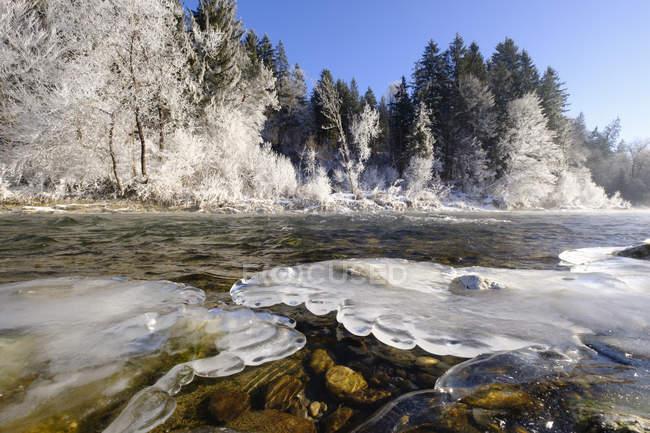 Заморожені riverbank Geretsried, ІСАР — стокове фото