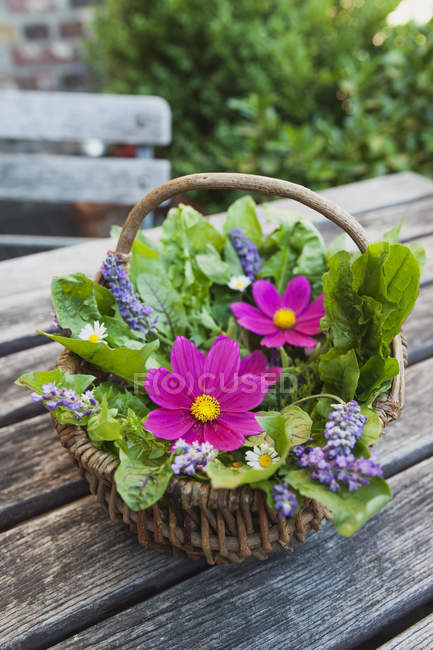 Edible flowers, leaves and herbs in wickerbasket on garden table — Stock Photo