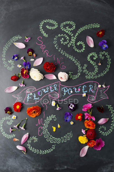 Word Flower Power and blossoms on blackboard — Stock Photo