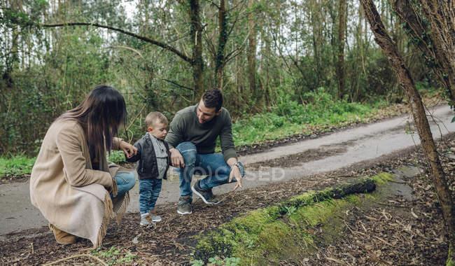 Сімейні прогулянки у лісі — стокове фото