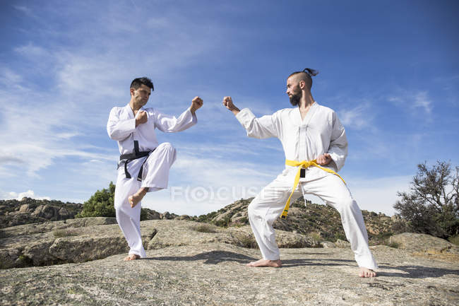 Мужчины, занимающиеся боевыми искусствами позируют — стоковое фото