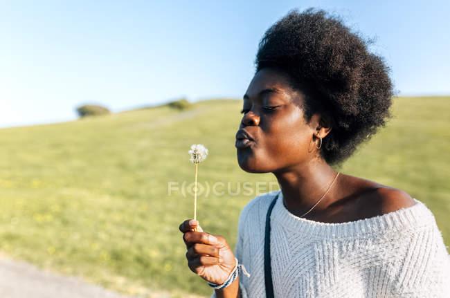 Woman blowing a dandelion — Stock Photo
