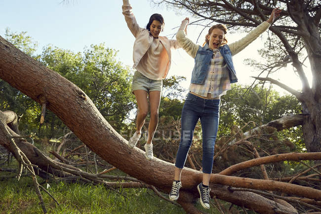 Young women jumping from tree trunk — Stock Photo