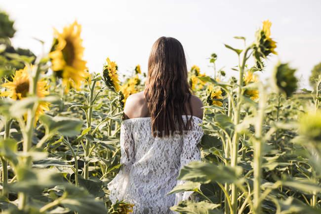 Femme marchant dans le champ de tournesol — Photo de stock