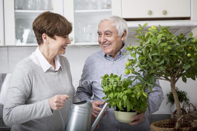 Casal sênior regando plantas em vaso — Fotografia de Stock