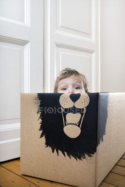 Boy inside a cardboard box — Stock Photo