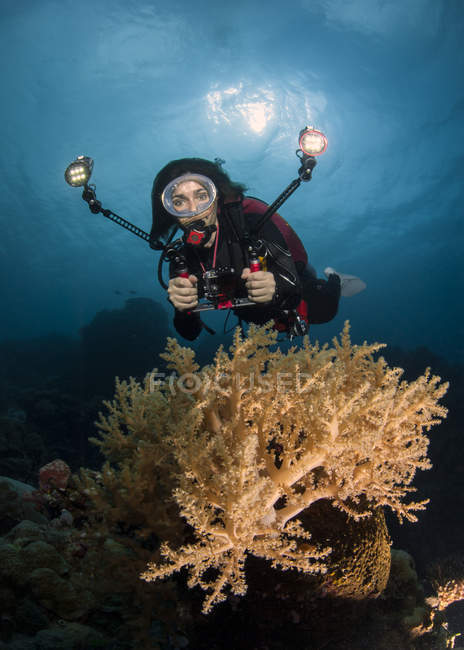 Palau, woman diving underwater showing ok signs — Stock Photo