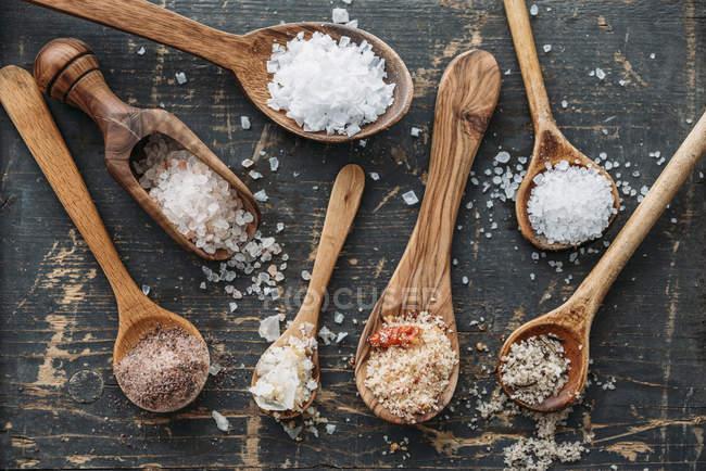 Дерев'яними ложками з різних сортів солі — стокове фото