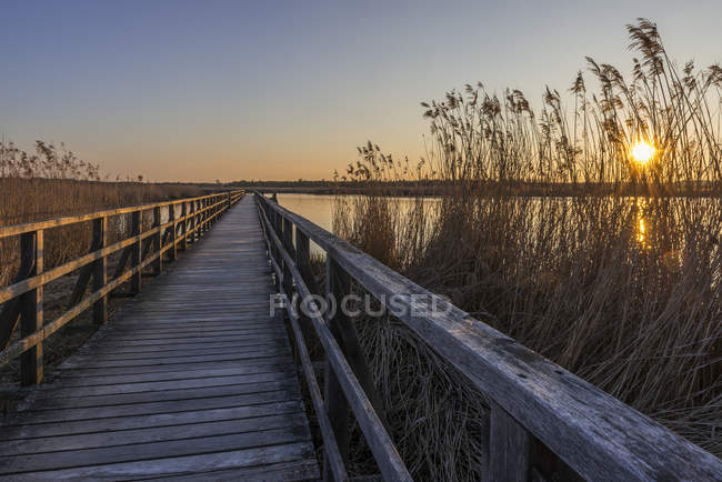 Wooden boardwalk at sunset — Stock Photo
