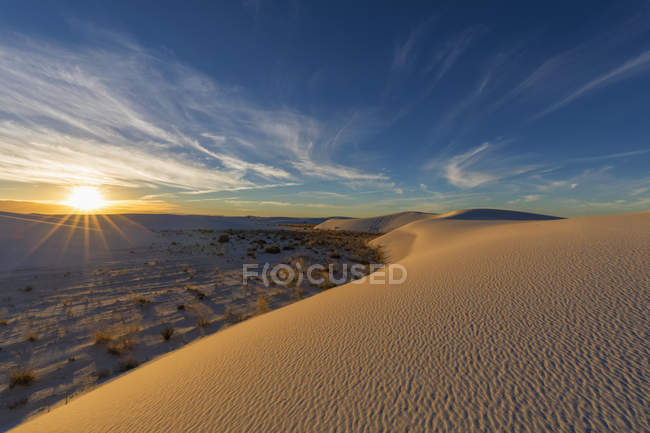 Paesaggio dell'alba nel deserto del Chihuahua — Foto stock