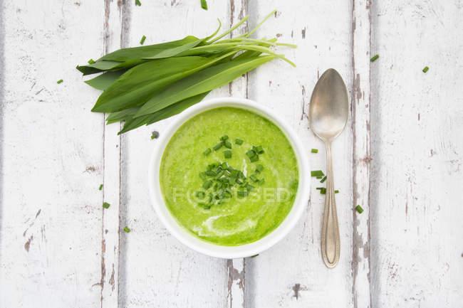 Bol de soupe de RO — Photo de stock