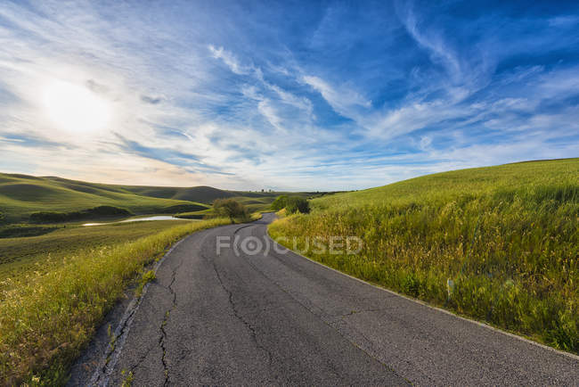 Дорога через поля — стоковое фото