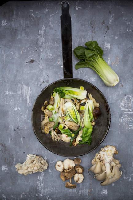Жаркое с китайской капустой — стоковое фото