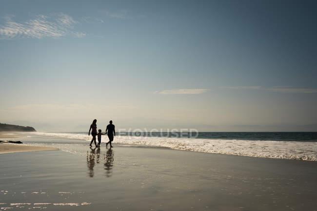 Семья, ходить на берегу песчаного моря — стоковое фото