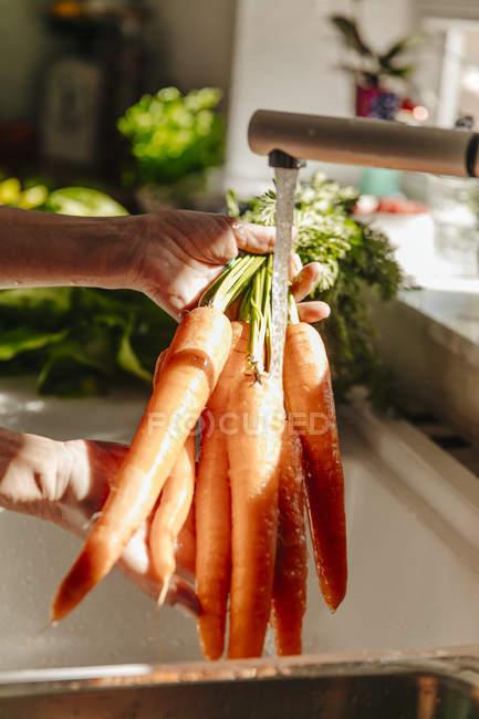 Female hands Washing carrots — Stock Photo