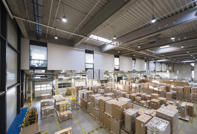 Cardboard boxes in Factory — Stock Photo