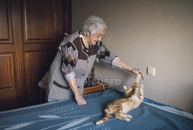 Femme jouant avec chat — Photo de stock