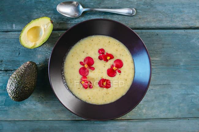 Крем суп з авокадо — стокове фото