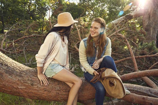 Women relaxing on tree trunk — Stock Photo
