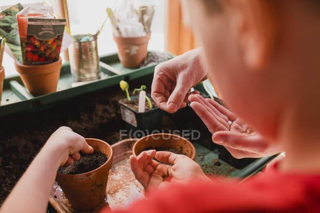 Vater und Sohn pflanzen Samen — Stockfoto