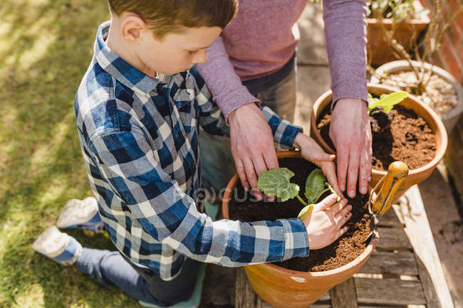Father and son planting seedling — Stock Photo
