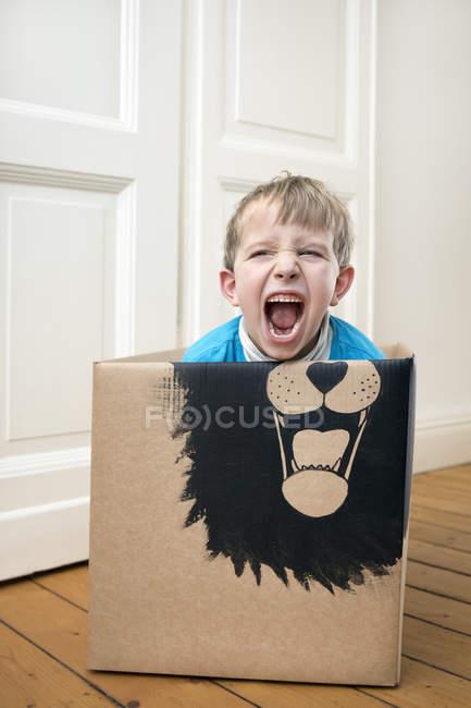 Roaring boy inside cardboard box — Stock Photo