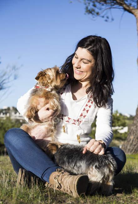 Mujer con terriers de Yorkshire - foto de stock