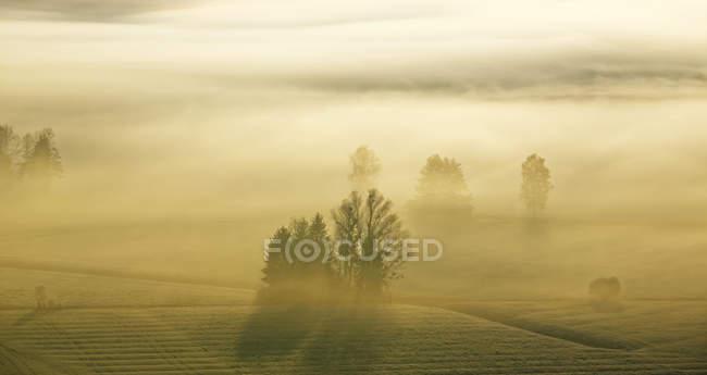 Nascer do sol acima de Loisachmoor — Fotografia de Stock