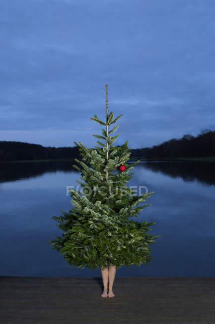 Woman standing behind Christmas tree — Stock Photo
