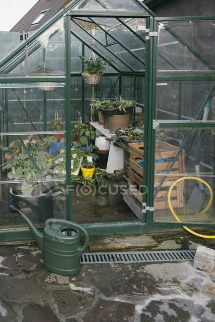 Invernadero con plántulas en el jardín - foto de stock