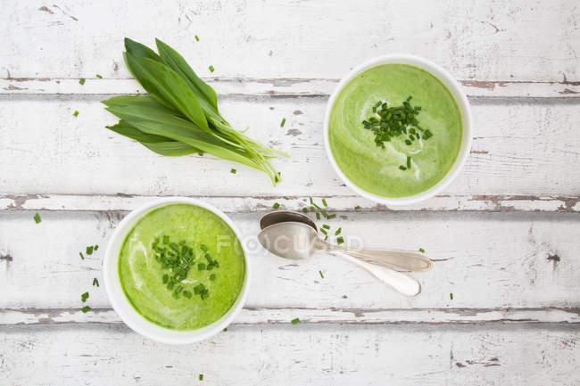 Deux bols de soupe de RO — Photo de stock