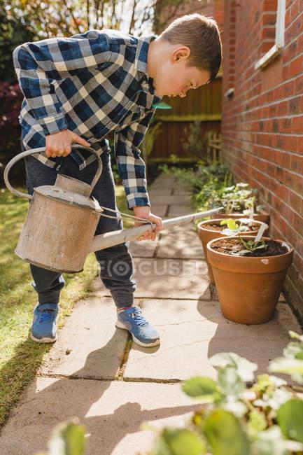 Boy watering seedling in flower pot — Stock Photo