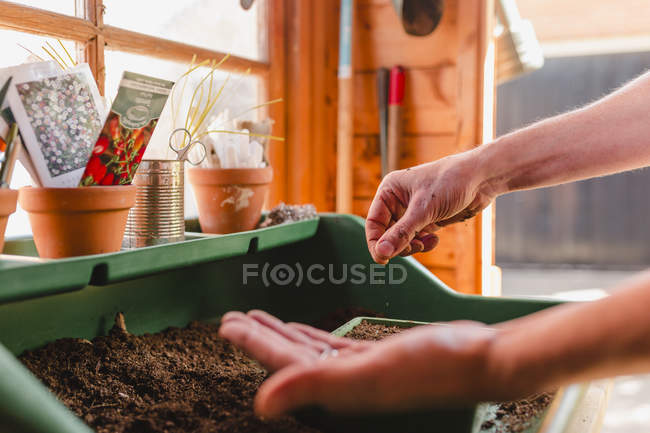 Человек сеет семена — стоковое фото