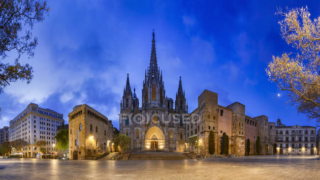 Cathedral in Barri Gothic Quarter — Stock Photo