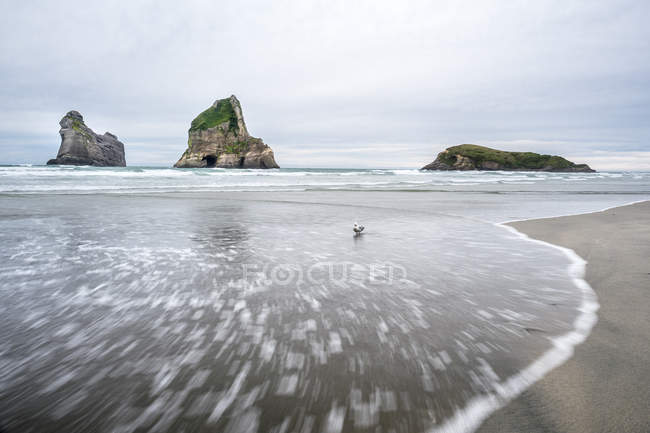 Wharariki Strand im Tasmanischen Meer — Stockfoto