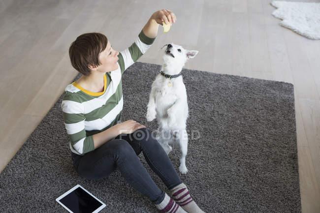Жінка сидить на підлозі і гра собака — стокове фото