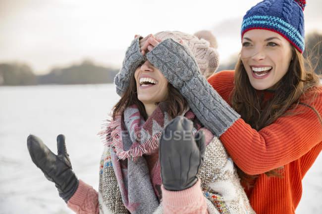 Amici scherzare sul lago ghiacciato — Foto stock
