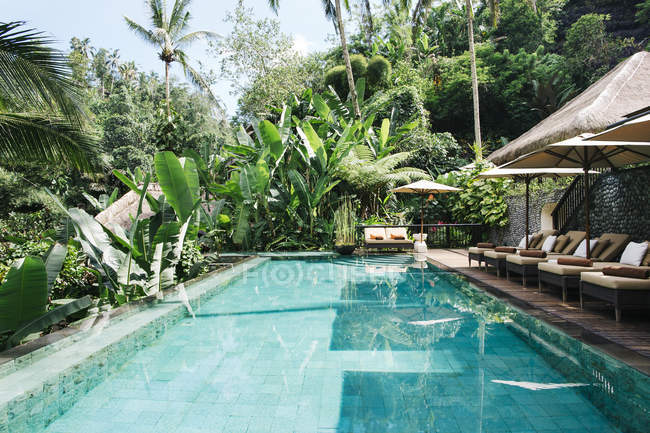 Indonesia, Bali. Tropical Swimming Pool during daytime — Stock Photo