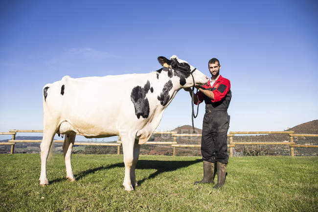 Portrait d'agriculteur adulte avec vache au pâturage — Photo de stock