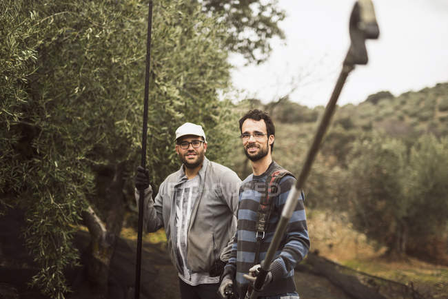 Portrait of two smiling workers with working tools in olive grove — Stock Photo
