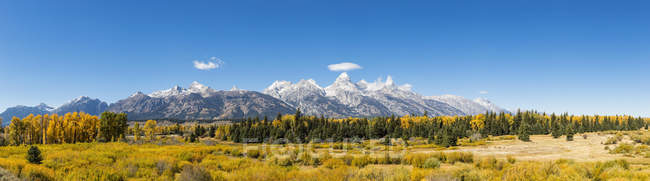 Estados Unidos, Estados Unidos, Wyoming, Rocky Mountains, Teton Range, Grand Teton National Park - foto de stock