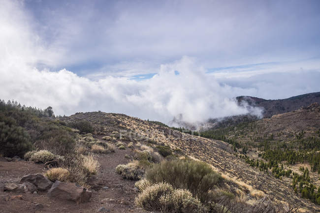 Spain, Tenerife, landscape in Teide National Park — Stock Photo
