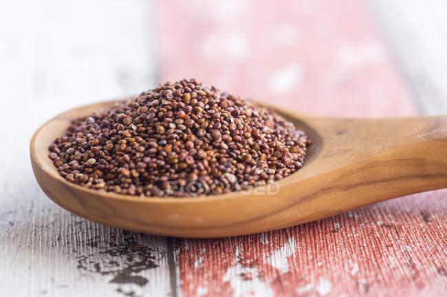 Cucchiaio di legno di quinoa rossa — Foto stock